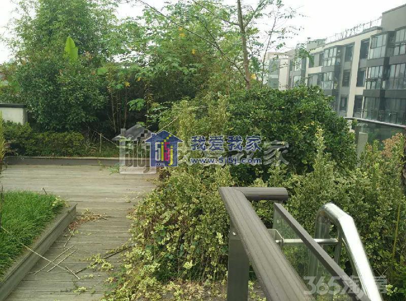 幸福筑家 仙鹤门地铁口 恒温恒湿恒氧 欧式双拼别墅 大院子 钥匙