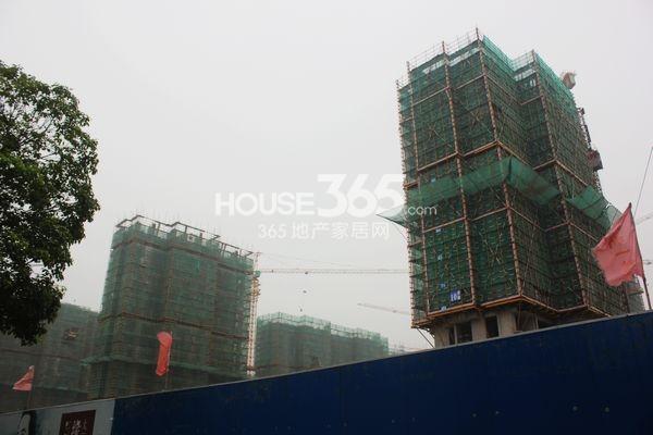 雅戈尔太阳城缘邑实景图3(7月摄)
