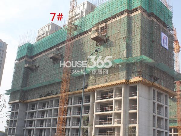 绿城玉兰广场7#楼工程进度实景图(2014.11)