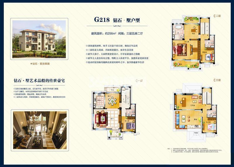 碧桂园256㎡五室两厅