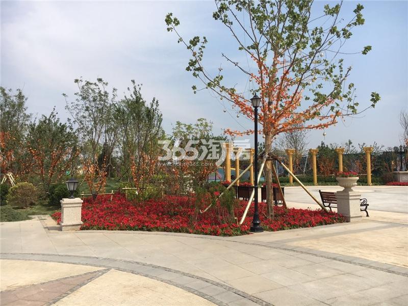 亿利华彩城实景图