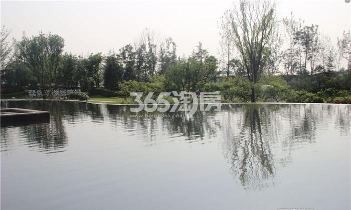 雅居乐湖居笔记示范园林实景(摄于2016.09.29)