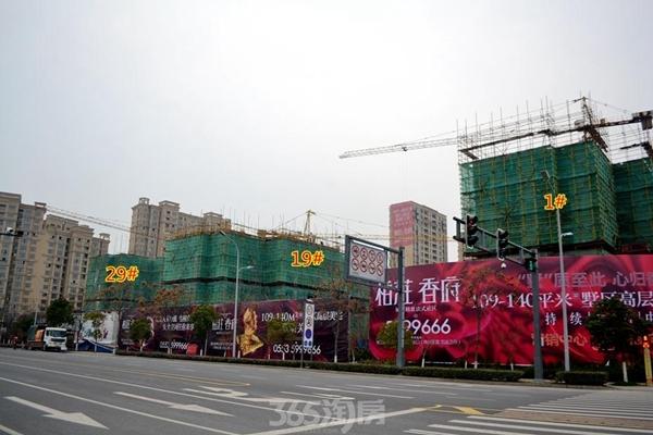 柏庄香府工程进度(2017.1摄)