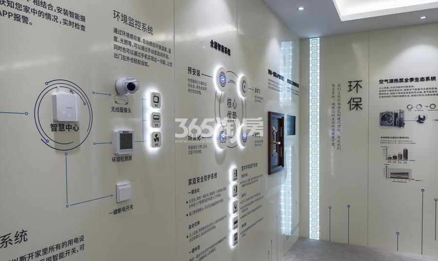 新城香悦公馆工艺展示墙 2017年3月摄