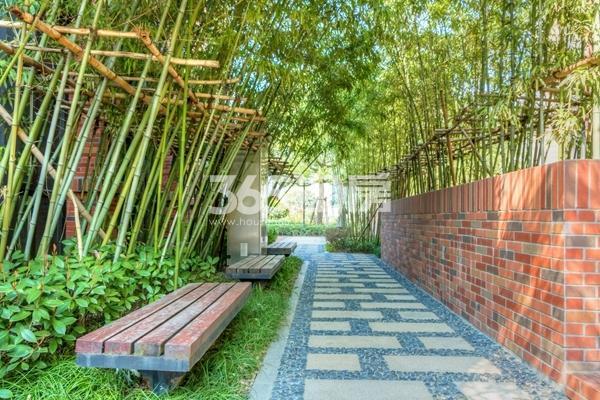 长泰国际社区小区景观实景图(2017.5 摄)