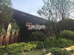 中南上悦城