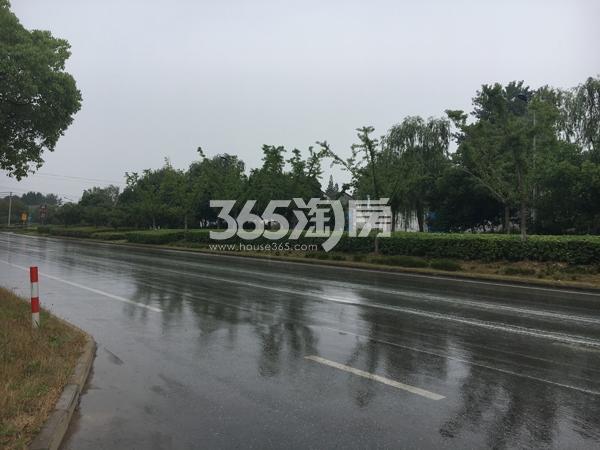 瑞安翠湖山周边道路交通(8.8)