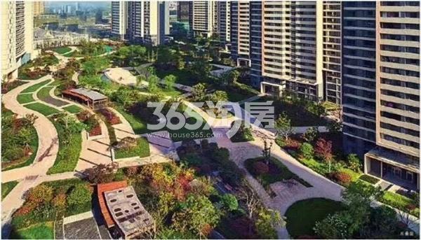 融创城小区内公园绿化实景(2017.9.4)