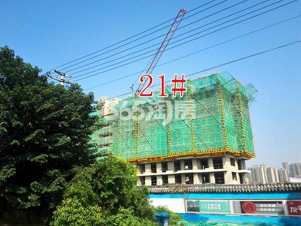 城置四期万锦城21#工地实景图(9.12)