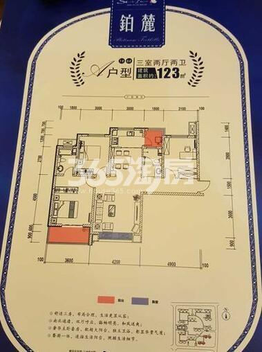 三迪枫丹1、6号楼A户型3室2厅2卫1厨123㎡