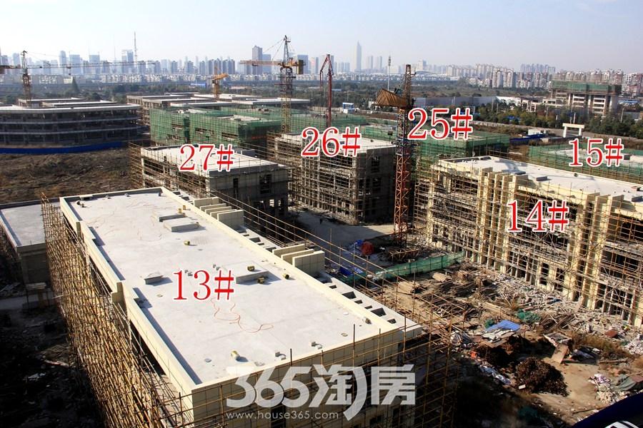 云谷科技园13#等多栋施工中(2017.11摄)